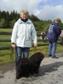 Hundeschulung Brilon Bild 9