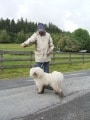 Hundeschulung Brilon Bild 15