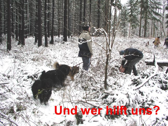 Puli Winterwanderung in Belg Hilfe