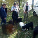 Puli Treffen Wedemark 2005 Durst