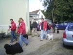Klubsieger-Zuchtschau in Wedemark