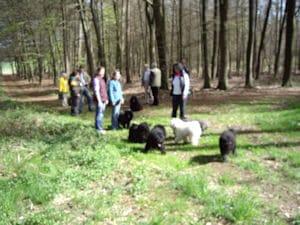 Frühlingsspaziergang in Reken @ Reken | Reken | Nordrhein-Westfalen | Deutschland
