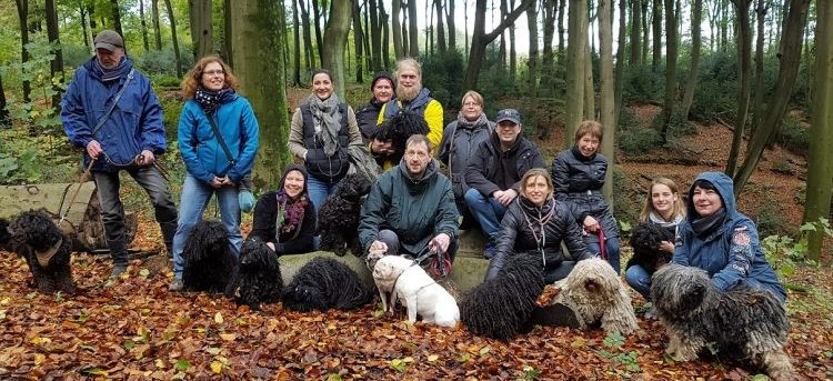 Dates and events in the German Puli Club