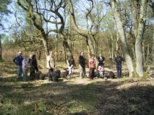 Frühlingswanderung in Oer-Erkenschwick @ Oer-Erkenschick | Oer-Erkenschwick | Nordrhein-Westfalen | Deutschland