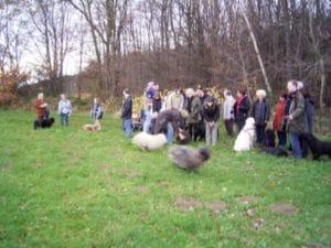 Weihnachtsspaziergang im Drachenfelser Ländchen Gruppe