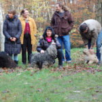 Weihnachtsfeier in Bochum Gruppenfoto Versuch