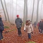 Wanderung über den Felsberg