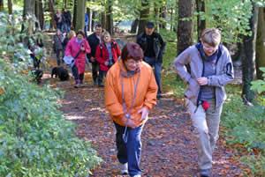 Herbstwanderung im Odenwald