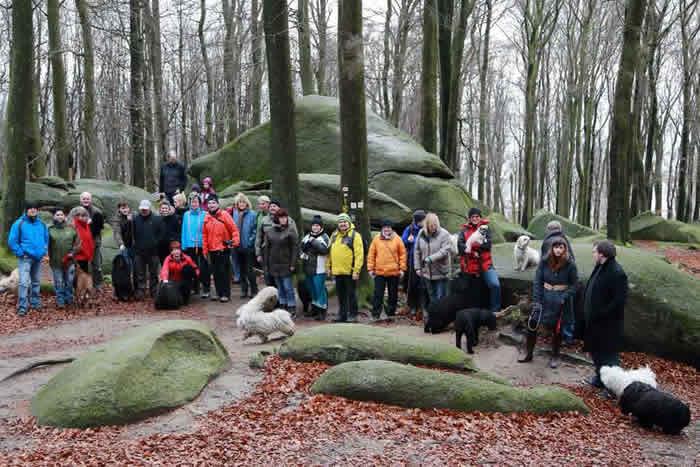 Winterwanderung 2013 im Odenwald Gruppenfoto