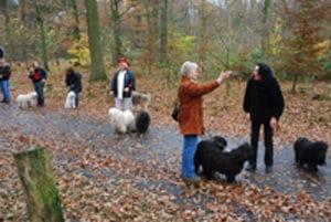 Jahresabschluss Wanderung 2008 @ Oer-Ekenschwick | Oer-Erkenschwick | Nordrhein-Westfalen | Deutschland
