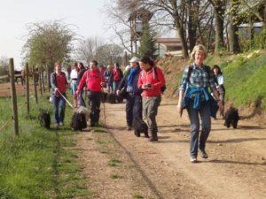 Frühlingswanderung der Landesgruppe Mitte in Gau Algesheim 17