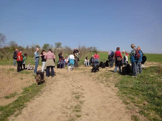 Frühlingswanderung der Landesgruppe Mitte in Gau Algesheim 13
