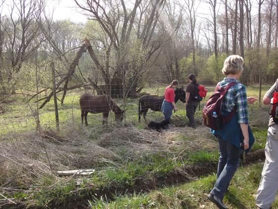 Frühlingswanderung der Landesgruppe Mitte in Gau Algesheim 6