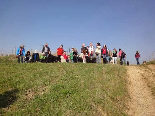 Frühlingswanderung der Landesgruppe Mitte in Gau Algesheim 9