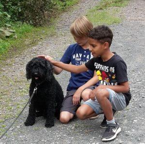 Puli Event Bad Sobernheim Selten Rassen Neugierige Kinder