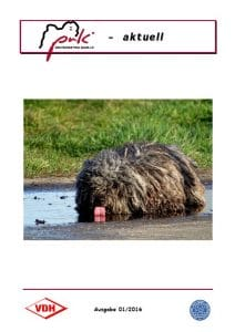 Puli Krant PuK Aktuell Issue 1 2016