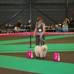 Europa dog show Holland 2011 Leo Platz 1