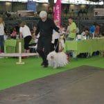 Paris Weltausstellung 2011 Gerd läuft