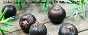 Am Tiergarten in Dillenburg-Donsbach @ Tiergarten in Dillenburg-Donsbach | Dillenburg | Deutschland