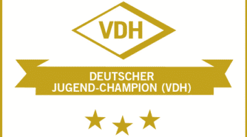 VDH German Youth Champion