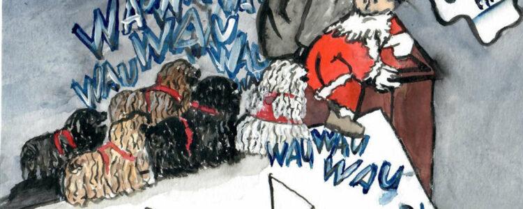 Weihnachtswettbewerb Dt. Puli Klub e.V.